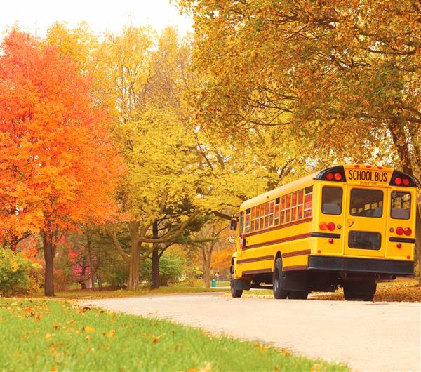 Bus on fall road