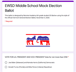 Mock election ballot